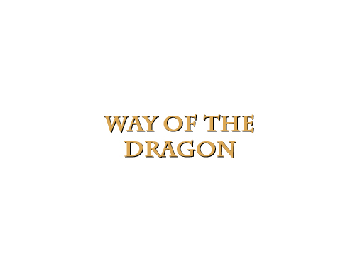 Way of the Dragon title by Marten Go
